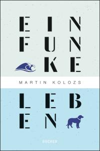 Cover_Kolosz_EinFunke_0